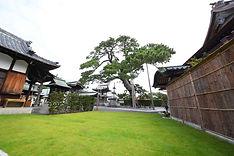 大慶寺の歴史.JPG