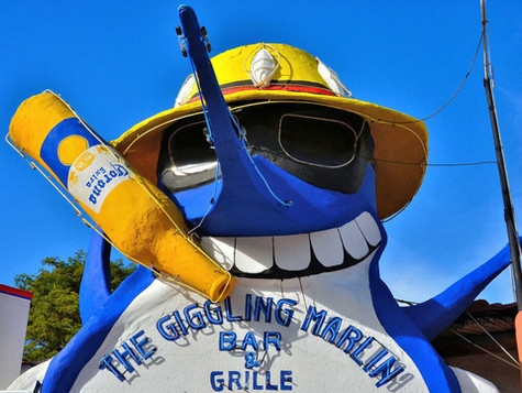 The Giggling Marlin