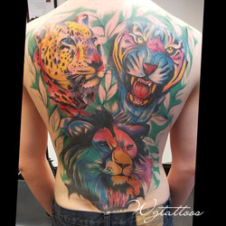 lion tiger colour tattoo