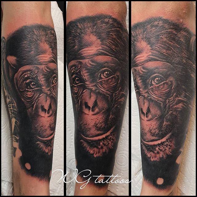 #chimp #chimpanzee #animaltattoo #wgtatt