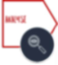 SAMOCO - Marketinganalyse