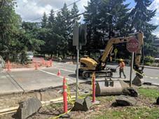 NE Bellevue Crosswalks