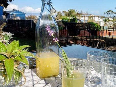Herbed Lemonade