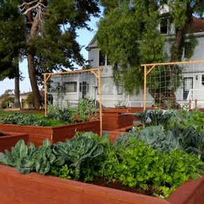 The Old-Timey Farm In Southern California That's Hiding In The Middle Of The City