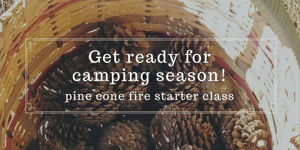 Pine Cone Fire Starter Class