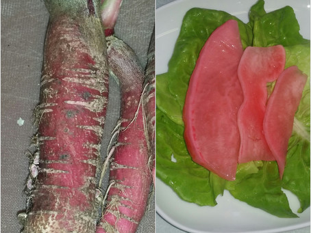 Pickled Scarlet Radish