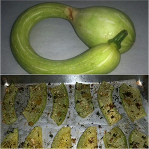 Roasted Rampicante Squash
