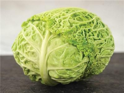 Auberuilliers Cabbage
