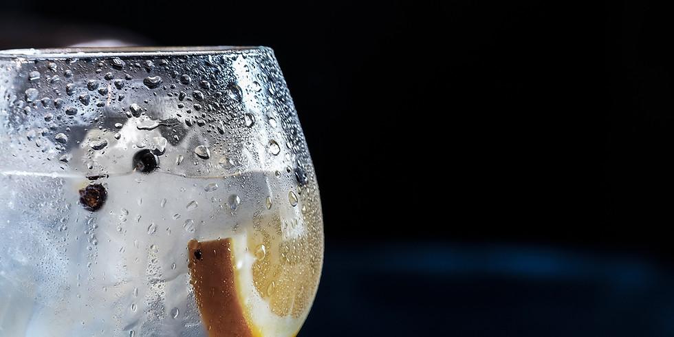 Private Gin Tasting