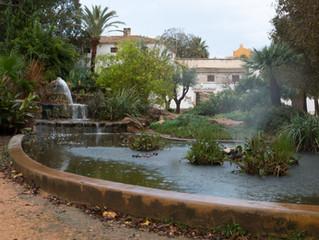 Visita al Parc de Torrecremada