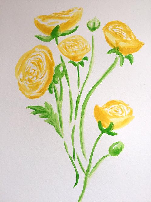 Ranunculus Yellow Beauty