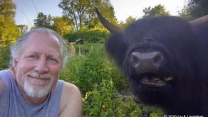 Mit liv som bonderøv – og hvorfor jeg gerne vil dele det med andre…