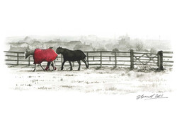 woodend-taking-in-the-horses