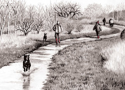 woodend-buttons_dog-walking_gail-yerrill