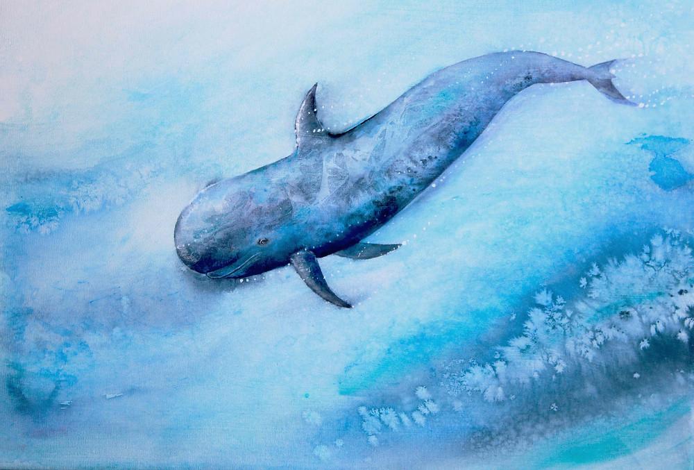 pilot whale, underwater watercolour
