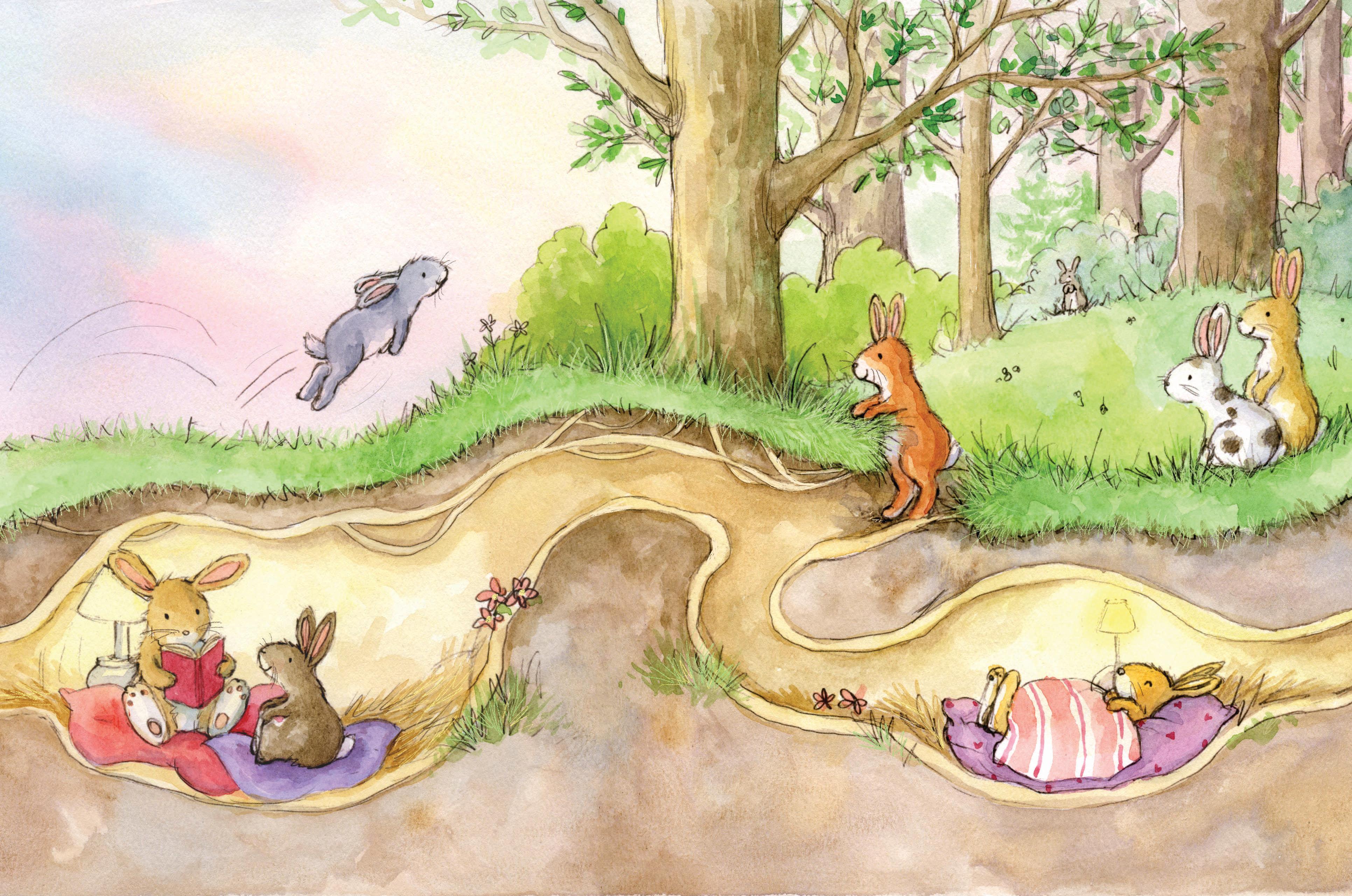 Rabbits playing at sunset_gail yerrill_portfolio