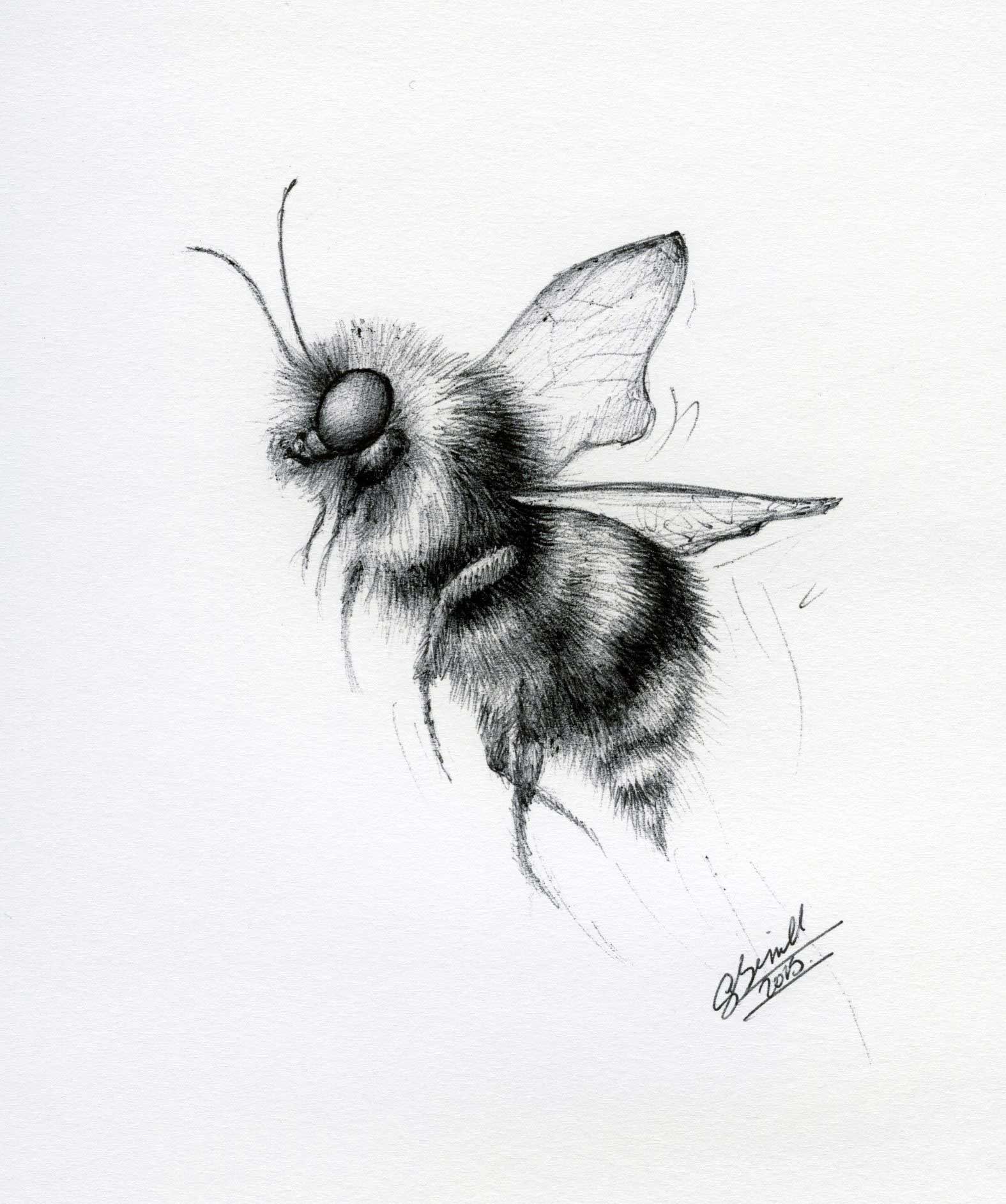 Bee-in-biro_gail-yerrill