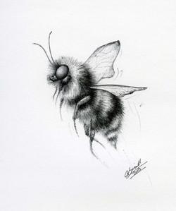Bee-in-biro_gail-yerrill