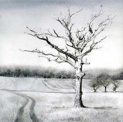 wood end drawings- west end lightening tree low res