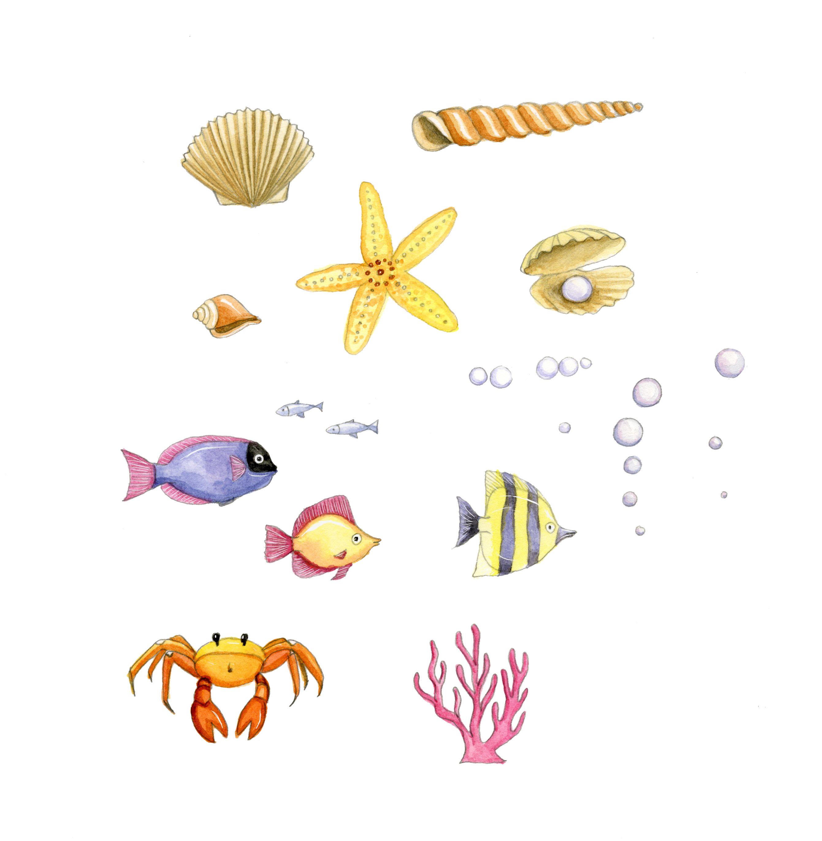 Fishes,starfish and shells_portfolio_gail yerrill