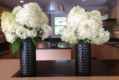 Vases of beautiful hydrangea