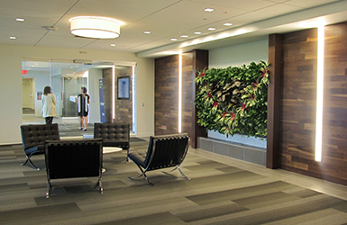 SUEZ NORTH AMERICA CORPORATE HEADQUARTERS INTERIOR FITOUT