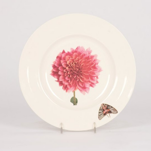Dahlia Salad Plates - Set of Four