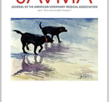 """Waverunners"" as Cover Art"
