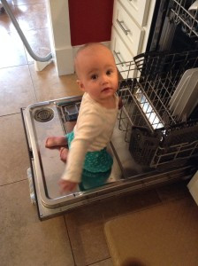 brook dishwasher