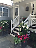 Pink and White Entrance Planters