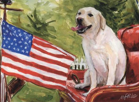 Dog Writers Association of America Maxwell Medallion Award