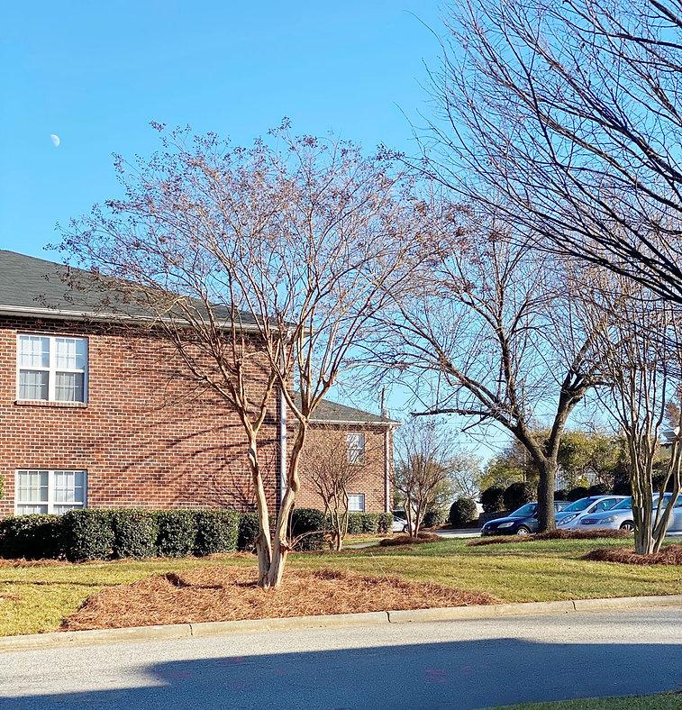 Greensboro-Building-Smaller.jpg