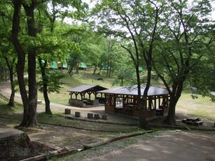 鷹キャンプ入口2.jpg
