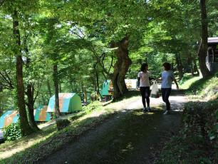 鷹の巣キャンプ場_歩き横.jpg