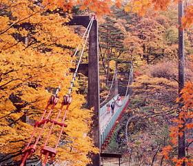 鷹の巣のつり橋