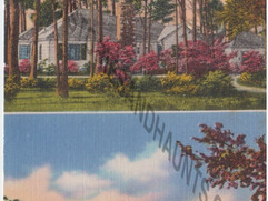 Floral Point Guest Home - undated