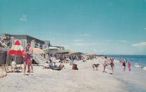 Beach Scene1956