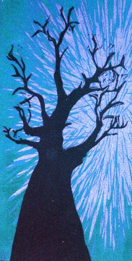 Baob Tree