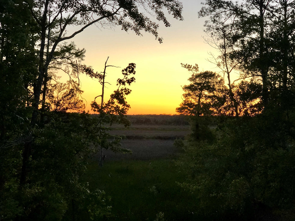 sunsetwebpage.jpg