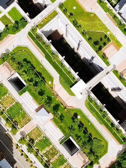 Sapphire Balconies Construction's Carbon Dilemma