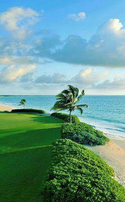BILLIONAIRES ISLAND BEACHES & GARDENS (8
