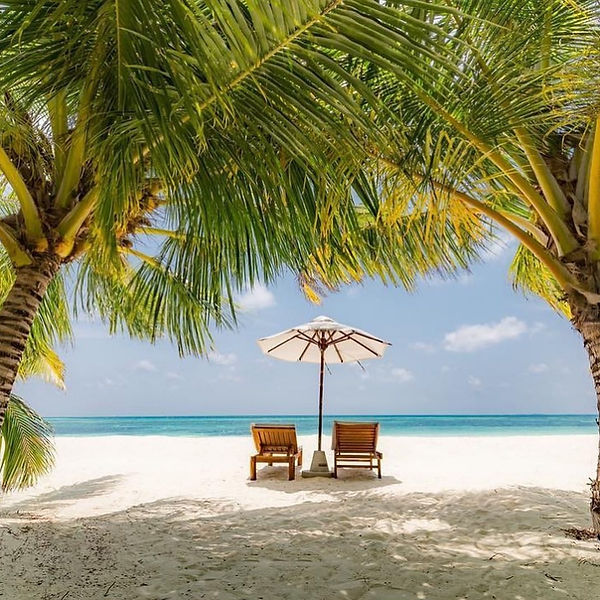 billionaires island coco palms.jpg