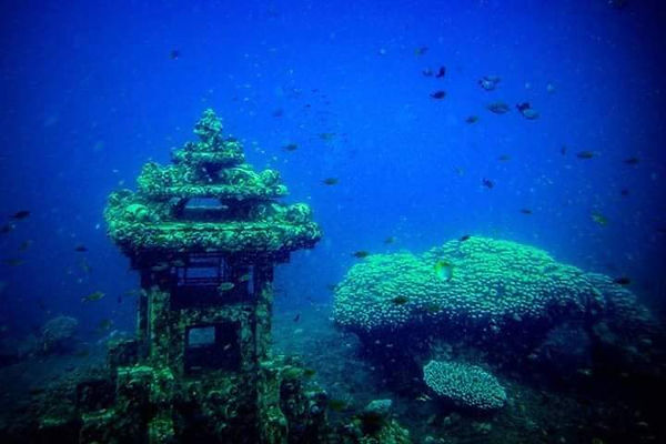 WORLD CLASS DIVING BILLIONAIRES ISLAND (