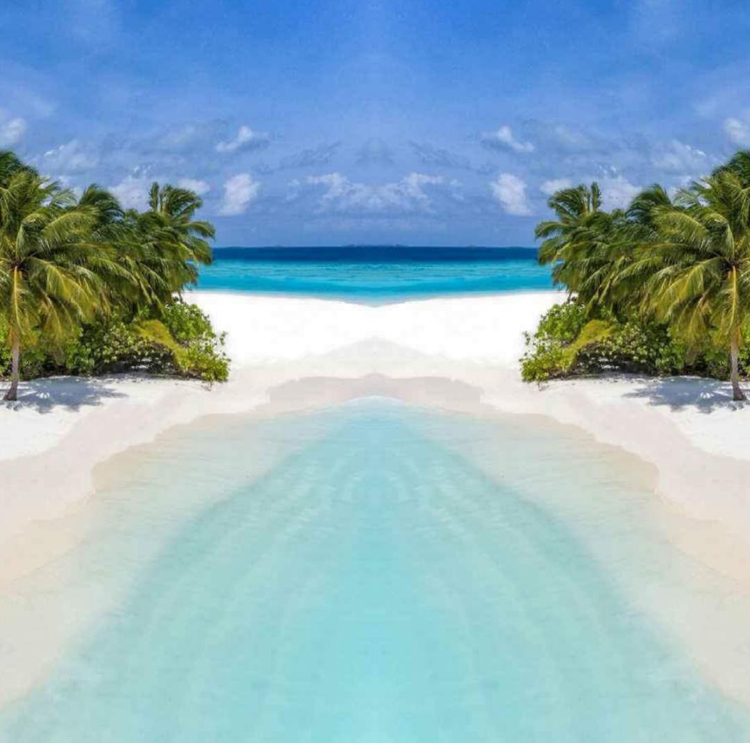 PREFAB BEACH BUNGALOWS (5)