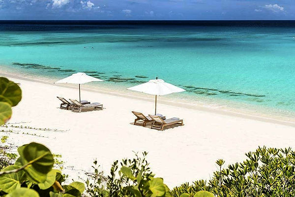 BEACHES & GARDENS BILLIONAIRES ISLAND (1