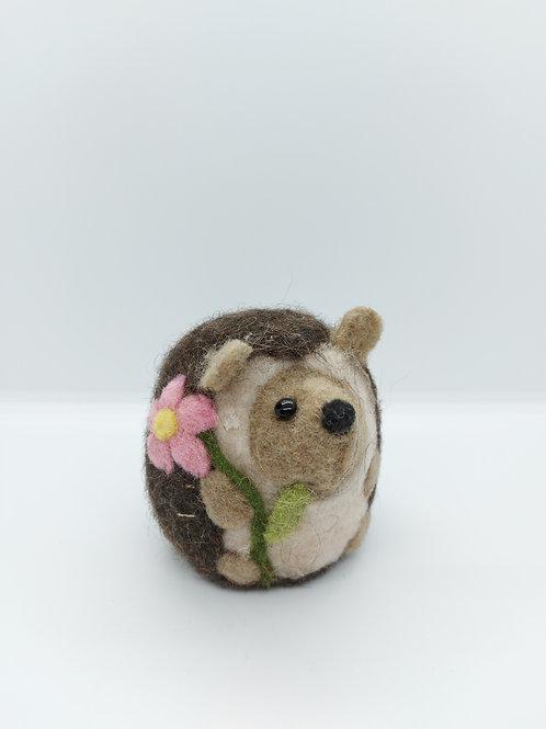 Easter Hedge hog