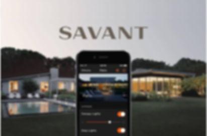 Savant Control - full home audio visual