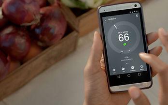 Nest Mobile Phone App.jpg