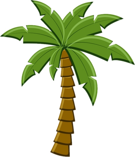 palm tree edited.png