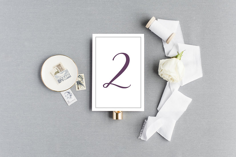 Simple Elegant Classic Table Numbers